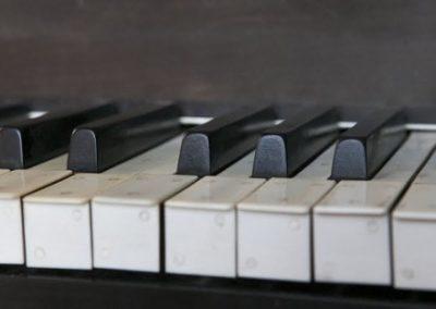 Toetsen orgel kerk Tjamsweer